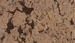 Настенное пробковое покрытие Art Cork Design, коллекция Mountain